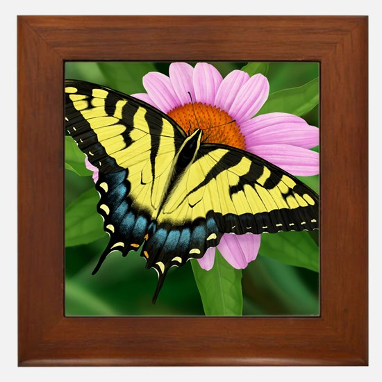 Swallowtail Framed Tile