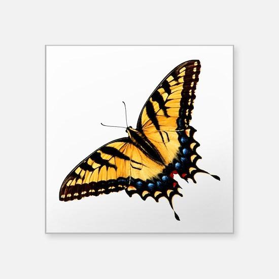 """tigerSwallowtail45 Square Sticker 3"""" x 3"""""""