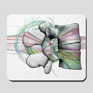 lumbar 17 Mousepad