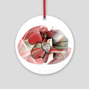 lum 124 Ornament (Round)