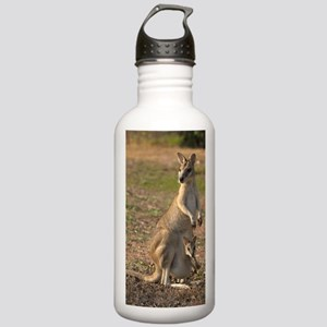 _DSC4084 Stainless Water Bottle 1.0L