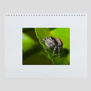 Grumpy Spider Wall Calendar