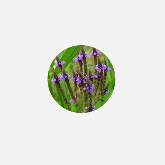 calendar blue verbitum Mini Button