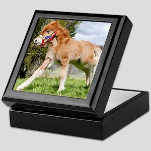 Orphaned Foal - Joy Keepsake Box