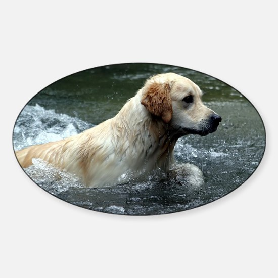 Labradoodle greeting Sticker (Oval)