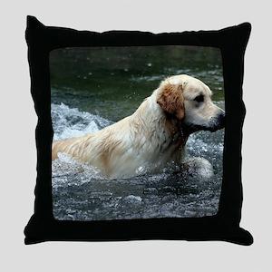 Labradoodle panel print Throw Pillow