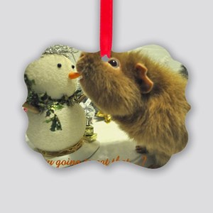 Are you going to eat that Picture Ornament