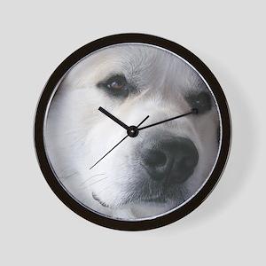 Great pyr Wall Clock