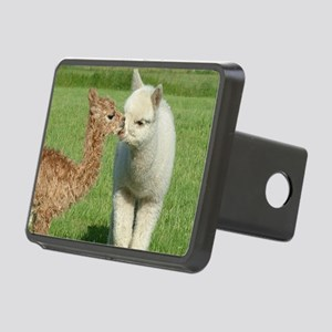 oct Rectangular Hitch Cover