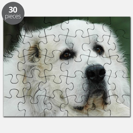 Great pyr Puzzle