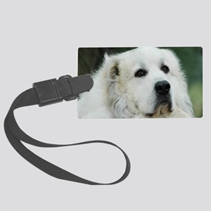 Great pyr Large Luggage Tag