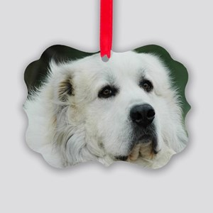 Great pyr Picture Ornament