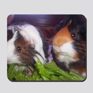 Guinea pigs, Watson and Sophie Mousepad