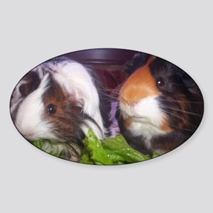Guinea pigs, Watson and Sophie Sticker (Oval)