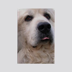 Great pyr Rectangle Magnet