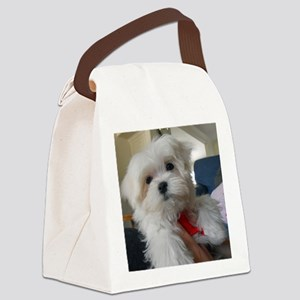 025 Canvas Lunch Bag