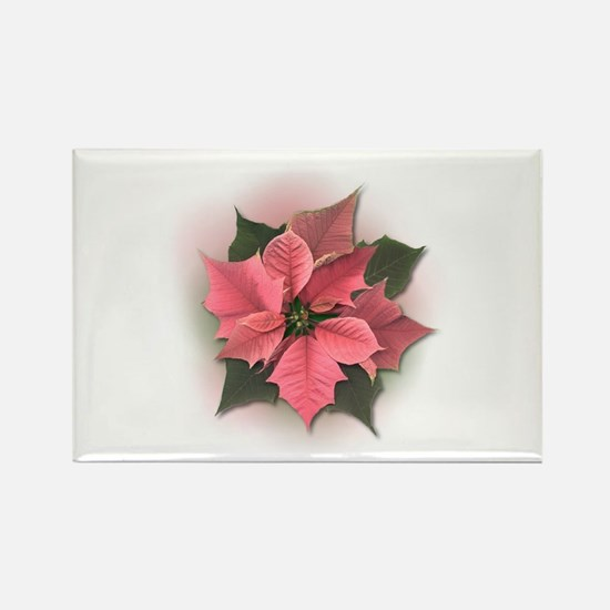 Pink Poinsettia Rectangle Magnet