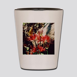 group lily Shot Glass