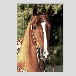 wrangler_ipad Postcards (Package of 8)