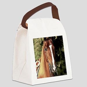 wrangler_ipad Canvas Lunch Bag