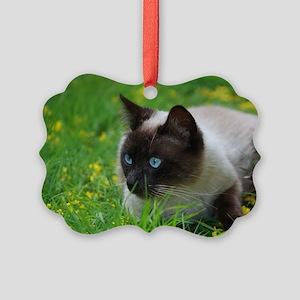 Ready to attack! Picture Ornament