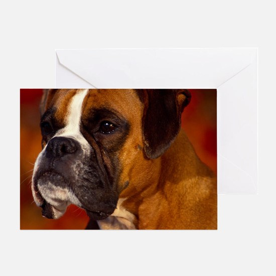 Boxer red pillow Greeting Card