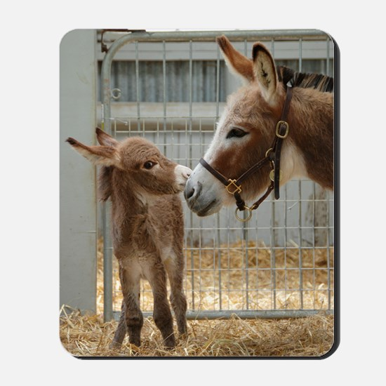 Newborn Donkey Foal Mousepad