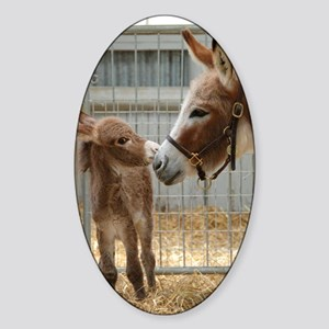 Newborn Donkey Foal Sticker (Oval)
