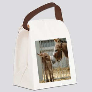 Newborn Donkey Foal Canvas Lunch Bag
