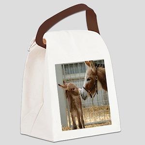 Newborn Donkey Foal Canvas Lunch Bag