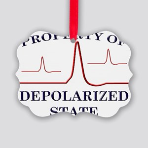 depolar Picture Ornament