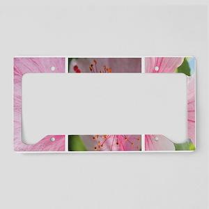 Pink Hibiscus Grid Fine Art P License Plate Holder