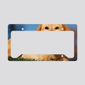 LabTB mousepad License Plate Holder