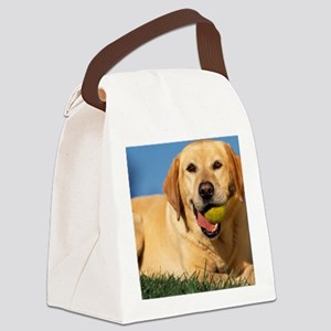 LabTB pillow Canvas Lunch Bag