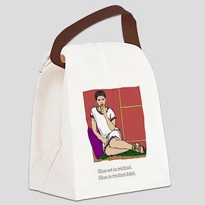 Quintus_col Canvas Lunch Bag