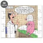 Pig Plastic Surgery Puzzle