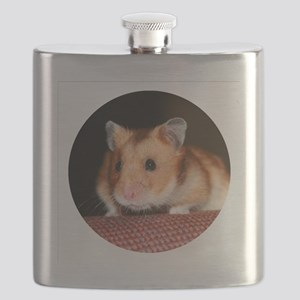 RoundHamster3 Flask