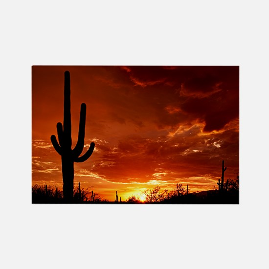 Saguaro Sunset-2 Rectangle Magnet