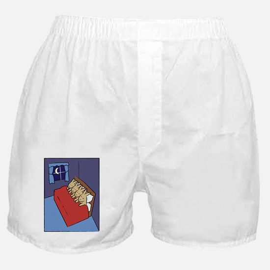 sleepingbunnies_rect Boxer Shorts