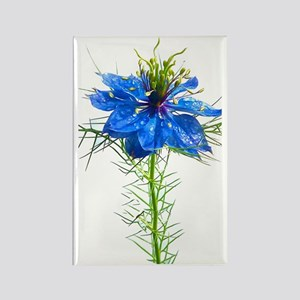 Blue Wildflower iPhone 3G Hard Ca Rectangle Magnet