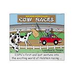Cow Races Throw Blanket