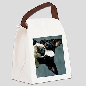 BT portrait ipad Canvas Lunch Bag