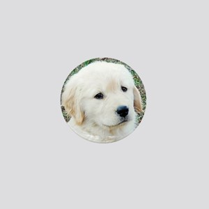 Golden Retreiever Puppy Keepsake Box,  Mini Button