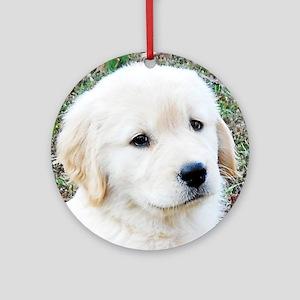 Golden Retreiever Puppy Keepsake Bo Round Ornament
