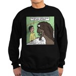 Buffalo Roaming Charges Sweatshirt (dark)
