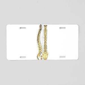 AP-Lat Spine Aluminum License Plate