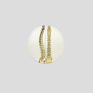 AP-Lat Spine Mini Button