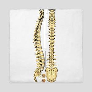 AP-Lat Spine Queen Duvet