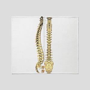AP-Lat Spine Throw Blanket
