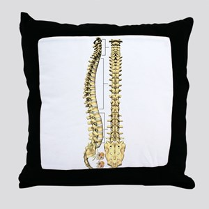 AP-Lat Spine Throw Pillow